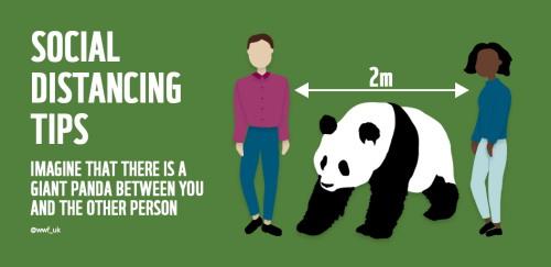 社会的距離を思い出すのに役立つヒント